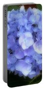 Gauzy Blues Portable Battery Charger
