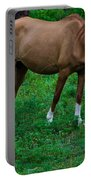 Gazing Horse Portable Battery Charger
