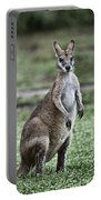 G'day Mate Portable Battery Charger