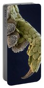 Gecko Foot Sem Portable Battery Charger