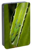 Gecko Portable Battery Charger