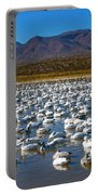 Geese At Bosque Del Apache Portable Battery Charger by Kurt Van Wagner