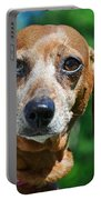 Gem The Miniature Dachshund Portable Battery Charger