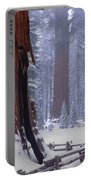 2m6835-general Sherman Tree - Giant Sequoias Portable Battery Charger