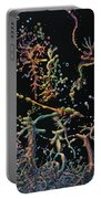 Genesis Portable Battery Charger by James W Johnson