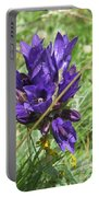Gentian Portable Battery Charger