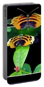 Gentle Butterfly Courtship 01 Out Of Bounds Portable Battery Charger