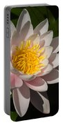 Gently Pink Waterlily In The Hot Mediterranean Sun Portable Battery Charger