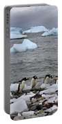 Gentoo Parade Portable Battery Charger