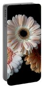 Gerbera Daisy   7302 Portable Battery Charger