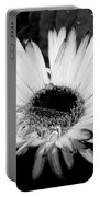 Gerbera In Black And White Portable Battery Charger