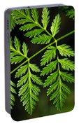 Gereric Vegetation Portable Battery Charger