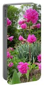 German Catchfly Pink Portable Battery Charger