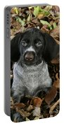 German Wire-haired Pointer Puppy Portable Battery Charger