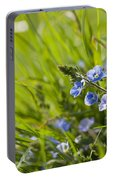 Germander Speedwell Portable Battery Charger