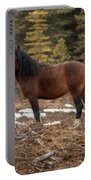 Ghost Forest Stallion Portable Battery Charger