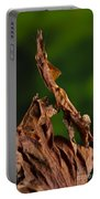 Ghost Or Dead Leaf Mantis Portable Battery Charger