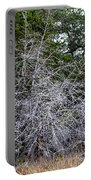 Ghost Trees 1 Portable Battery Charger