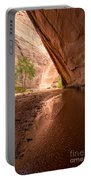 Giant Alcove Coyote Gulch - Utah Portable Battery Charger