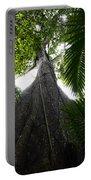 Giant Cashew Tree Amazon Rainforest Brazil Portable Battery Charger
