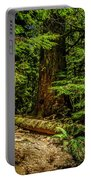 Giant Douglas Fir Trees Collection 3 Portable Battery Charger