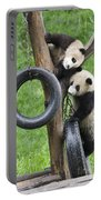 Giant Panda Cubs Portable Battery Charger