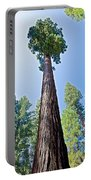 Giant Sequoia In Mariposa Grove In Yosemite National Park-california  Portable Battery Charger