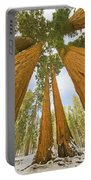 Giant Sequoias And First Snow Portable Battery Charger