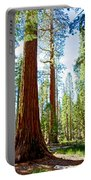 Giant Sequoias In Mariposa Grove In Yosemite National Park-california Portable Battery Charger