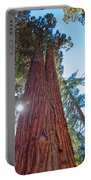 Giant Sequoias Portable Battery Charger
