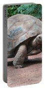 Giant Turtle Portable Battery Charger