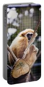 Gibbon On A Swing Portable Battery Charger
