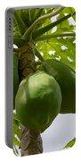 Gigantic Papaya Portable Battery Charger
