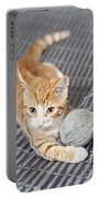 Ginger Cat With Yarn Ball Portable Battery Charger
