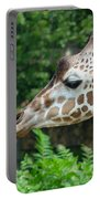 Giraffe-09028 Portable Battery Charger