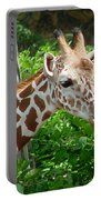 Giraffe-09034 Portable Battery Charger