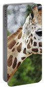 Giraffe Beauty Portable Battery Charger