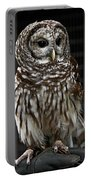 Give A Hoot Portable Battery Charger by John Haldane