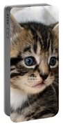 Gizmo The Kitten Portable Battery Charger
