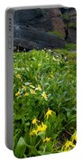 Glacier Lilies And Globeflower Beside A Mountain Stream Portable Battery Charger