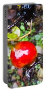 Glistening Wet Rose Hip Portable Battery Charger