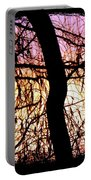 Glorious Silhouettes 3 Portable Battery Charger