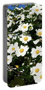 Glorious White Roses Db Portable Battery Charger