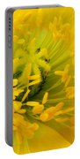 Glory Of Nature Portable Battery Charger