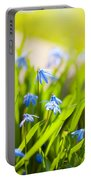 Scilla Siberica Flowerets Named Wood Squill  Portable Battery Charger