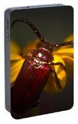 Glowing Beetle Portable Battery Charger