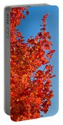 Glowing Fall Maple Colors 1 Portable Battery Charger