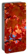 Glowing Fall Maple Colors 3 Portable Battery Charger