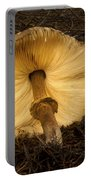 Glowing Shaggy Mane Mushroom Portable Battery Charger