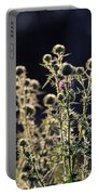 Glowing Thistle - 2 Portable Battery Charger